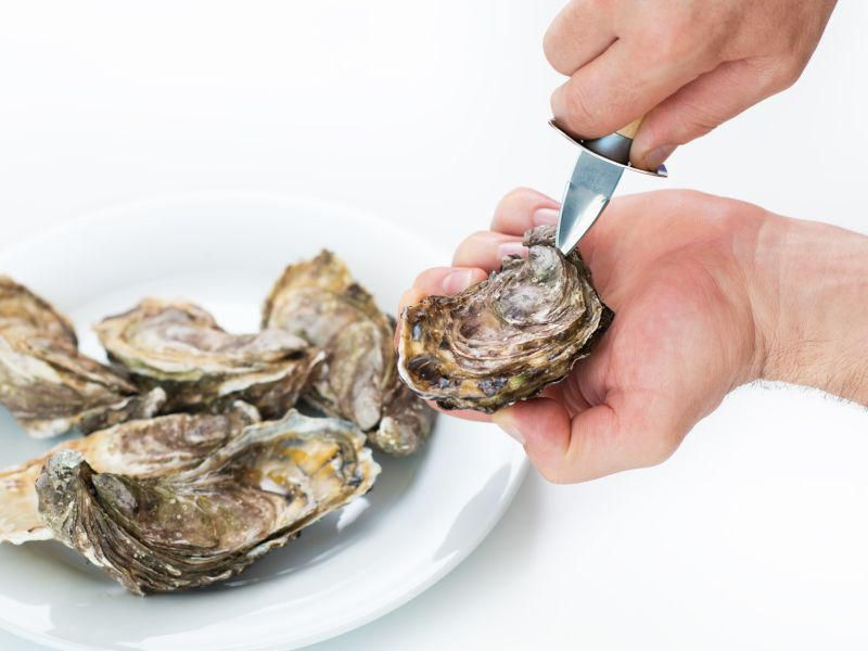 News Picture: Which Seafood Has the Highest Amount of Microplastics?