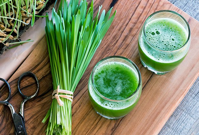 what does wheatgrass do for your body